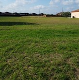 San Benito, TX Real Estate property listing