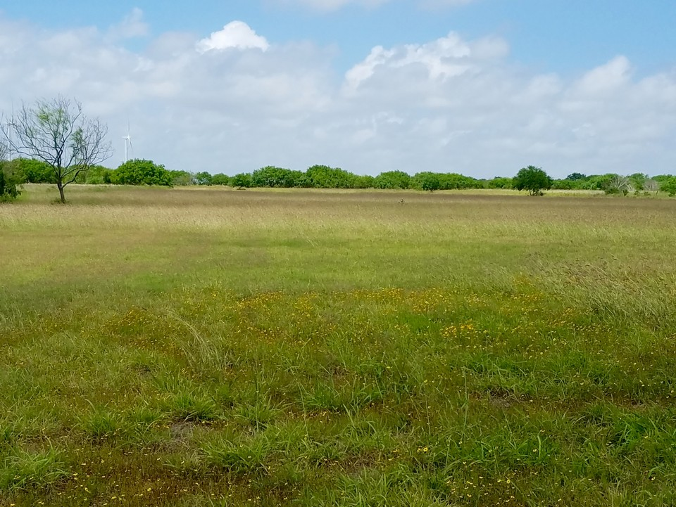 General Brandt Rd Rio Hondo, Tx | San Benito, TX Real Estate
